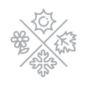 all season icon